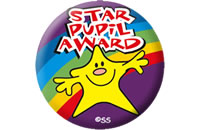 star-pupil-award-badges-591-p